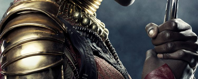 New 'Black Panther' Okoye Character Poster